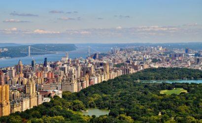 New York Ecologica